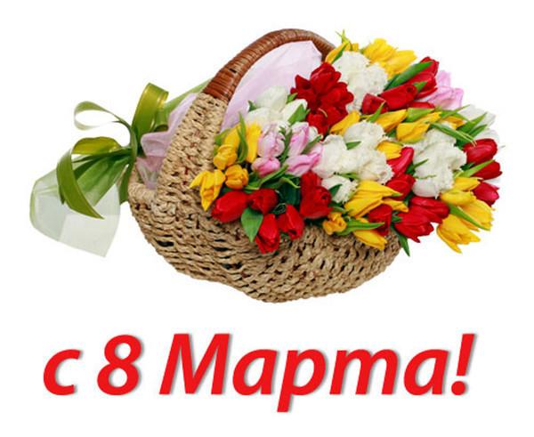 http://www.proflive-vologda.ru/sites/default/files/field/image/orig_cfc18b3fbaf9c2a4f7ee5ad05922cc1d.jpg